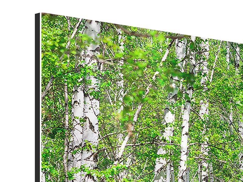 5 Piece Aluminium Print The Birch Forest
