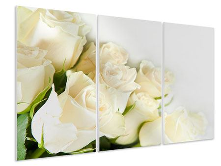 3 Piece Forex Print White Roses