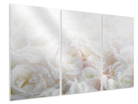 3 Piece Forex Print White Roses In The Morning Dew