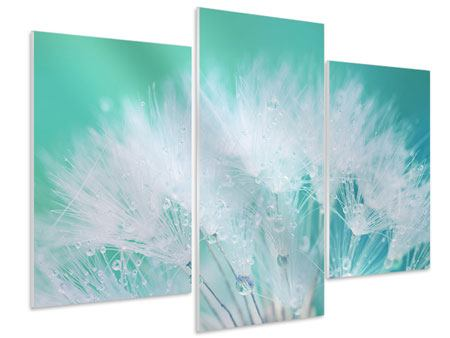 Modern 3 Piece Forex Print Close Up Dandelion In Morning Dew