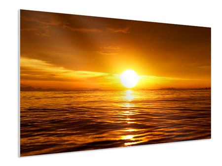 Forex Print Glowing Sunset On The Water