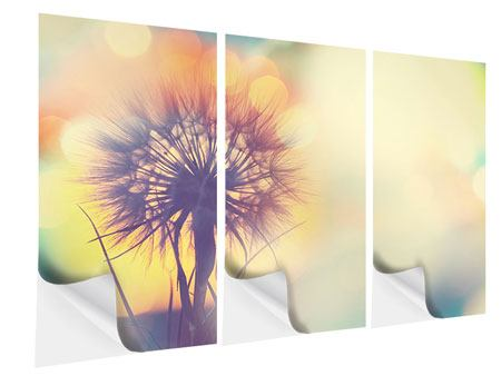 3 Piece Self-Adhesive Poster The Dandelion In The Light