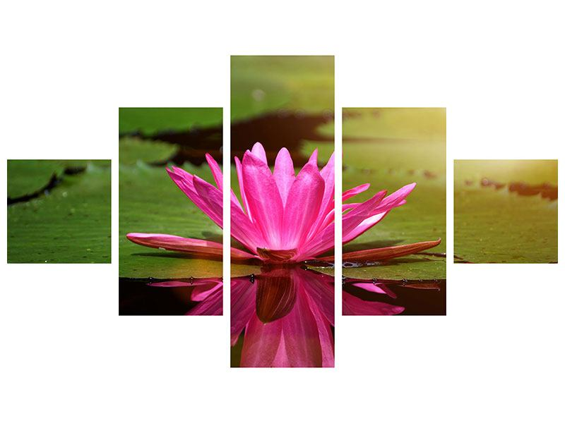 5 Piece Self-Adhesive Poster Lotus In Water