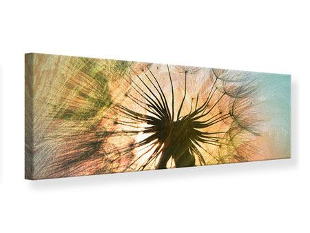 Panoramic Canvas Print XXL Dandelion