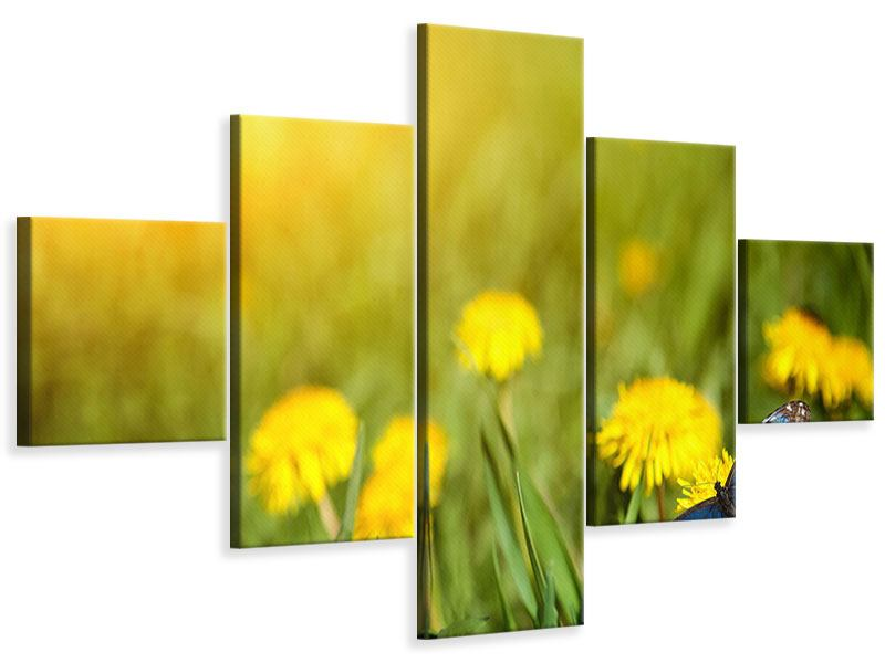 5 Piece Canvas Print Dandelion And Butterfly
