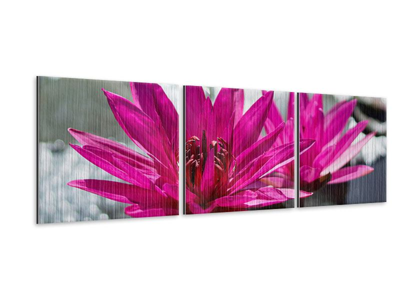 Panoramic 3 Piece Metallic Print Two Water Lilies In Pink