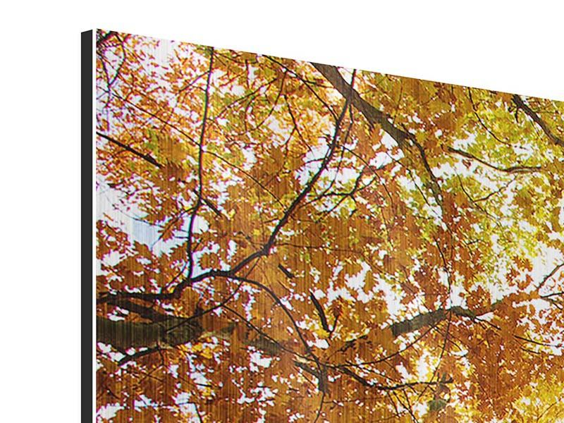 Modern 5 Piece Metallic Print Enlightened Autumn Trees