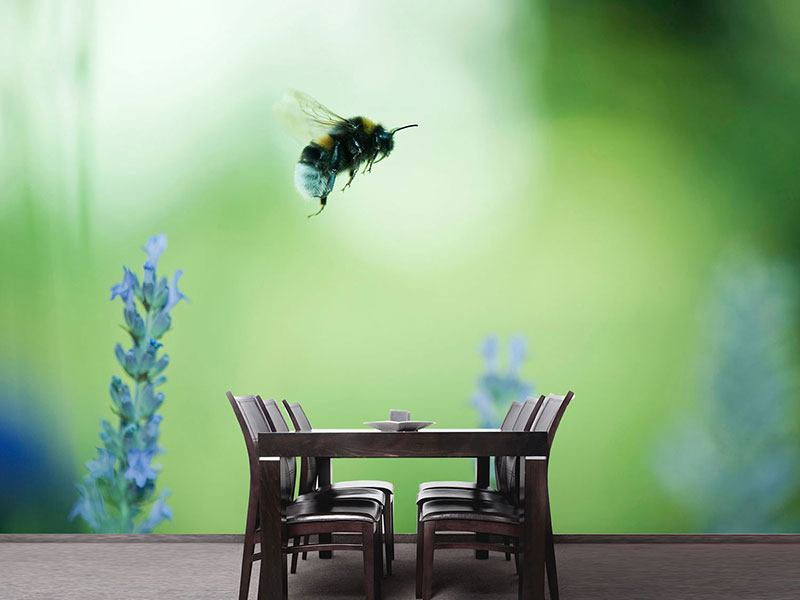 Photo Wallpaper The Bee
